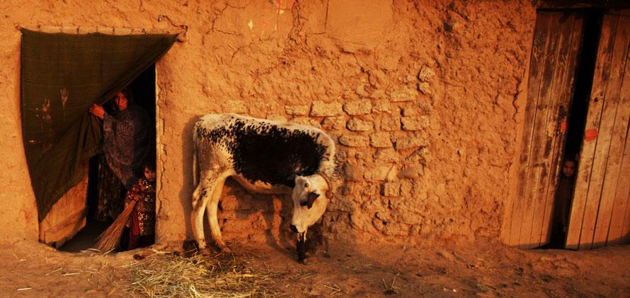 18.01.2010, Пакистан