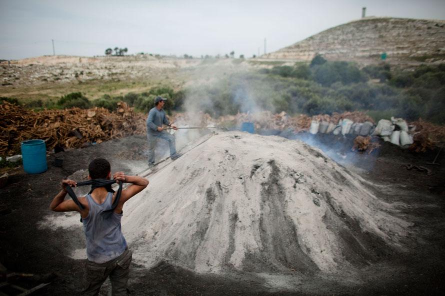 19.04.2010 Палестина