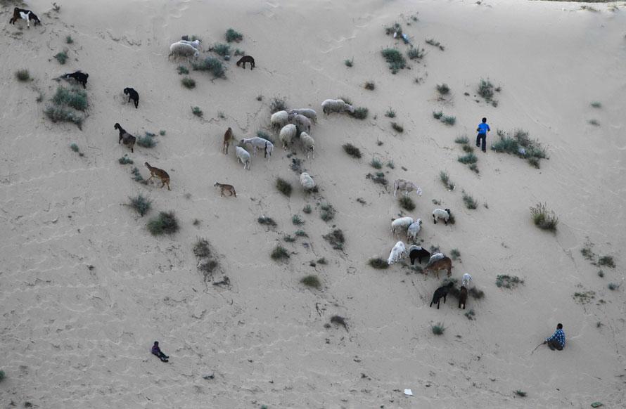 26.04.2010 Палестина