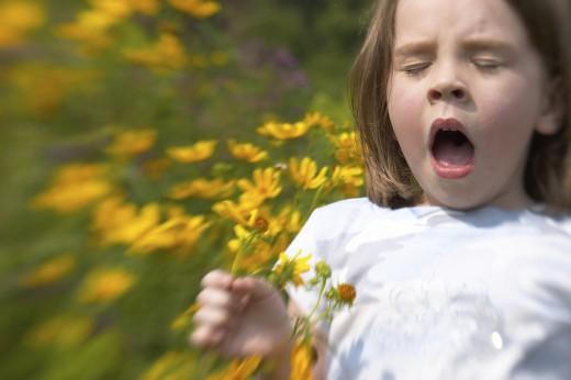 Пищевая аллергия у детей: грязь способствует здоровью