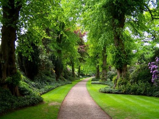 Ландшафтный дизайн как способ украсить территорию у дома