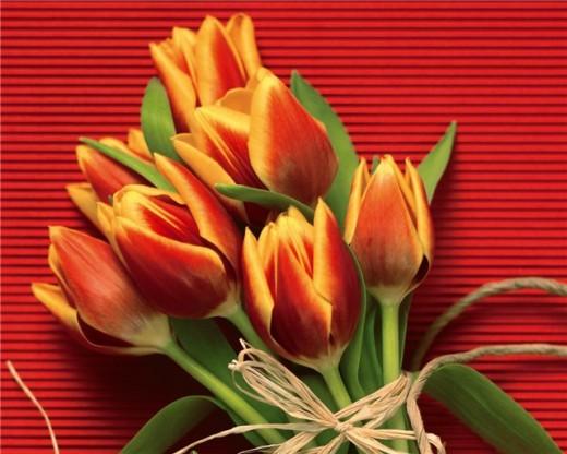 Радуйте букетами цветов не выходя из дома