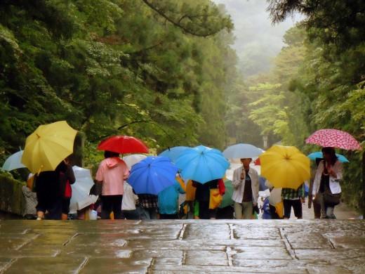 Зонты: продажа в интернет-магазинах