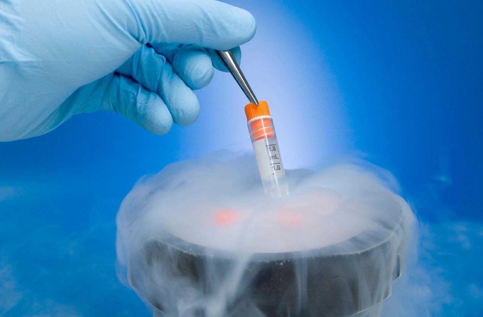 Фото в искусственной сперме, Сперма » Страница 3 порно фото и секс фото 2 фотография