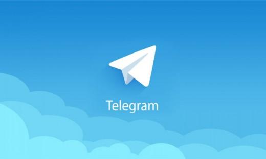 Telegram-бот поможет «Фокс-Экспресс» общаться с клиентами