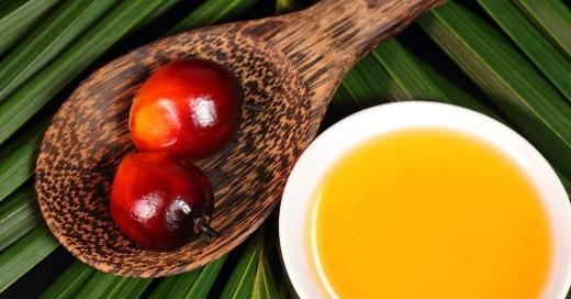 Мифы о пальмовом масле - польза и вред для здоровья