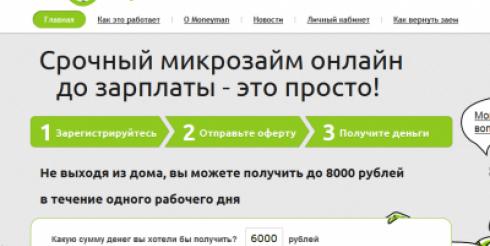 Стратегия и развитие стартап-проекта Moneyman.ru
