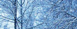 Высота снега в Гомельской области превышает среднее многолетнее значение в разы