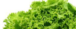 Салат салату рознь
