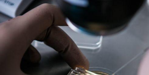 Лечение бесплодия у женщин в Киеве от экспертов Института Генетики Репродукции