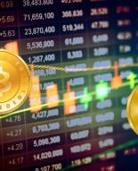 Как выбрать криптовалютную биржу новичку