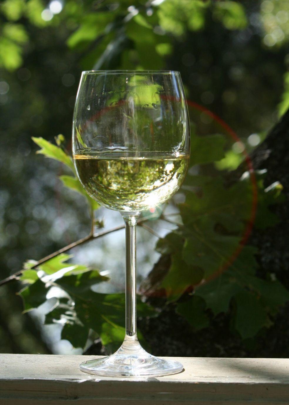 Белое вино в тени дуба