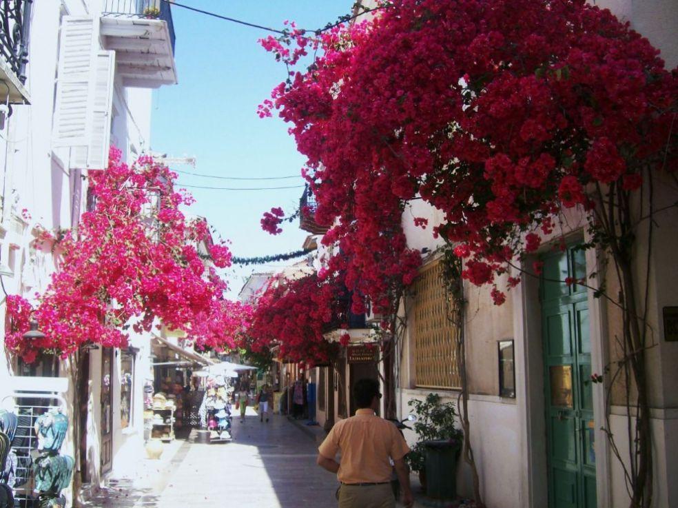 Город На́фплион на полуострове Пелопоннес
