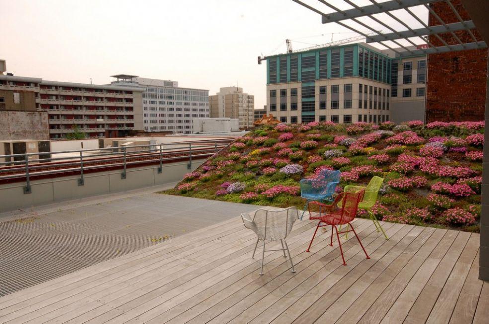 Озелененная крыша в Вашингтоне