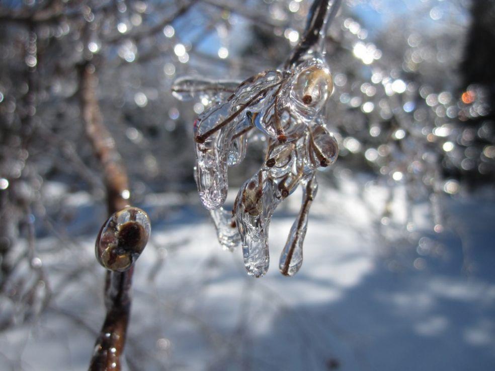 Зимние плюсы