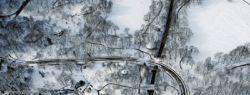 """""""Настоящая"""" американская зима (фото)"""
